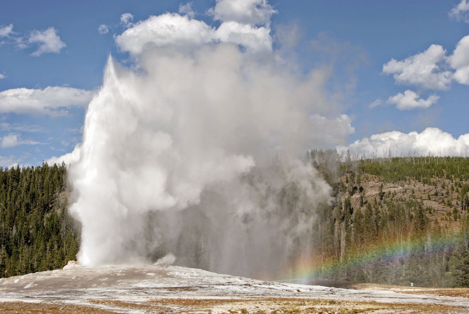 The Old Faithful at Yellowstone National Park                          Image Source: Wikipedia Commons