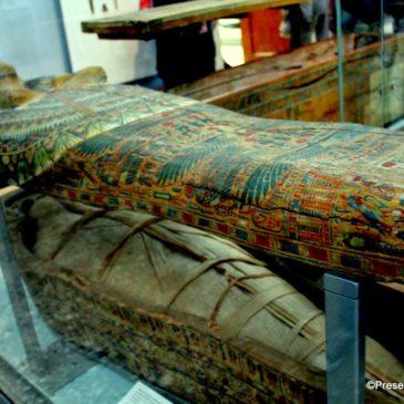 Mummy at the British Museum