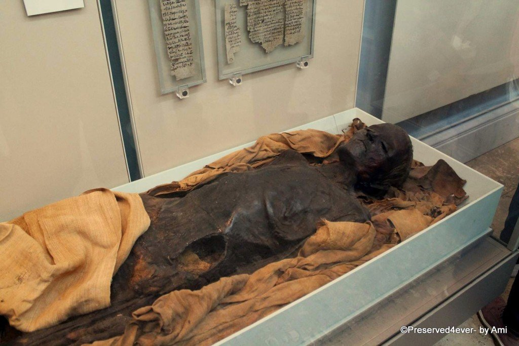 Unwrapped Mummy at the British Museum