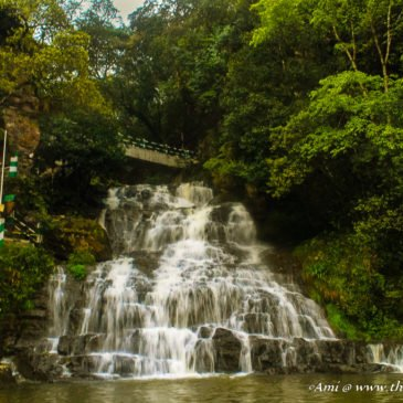 Walk through the Abode of Clouds – Meghalaya