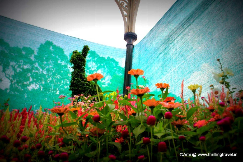 Flower show at Lalbagh
