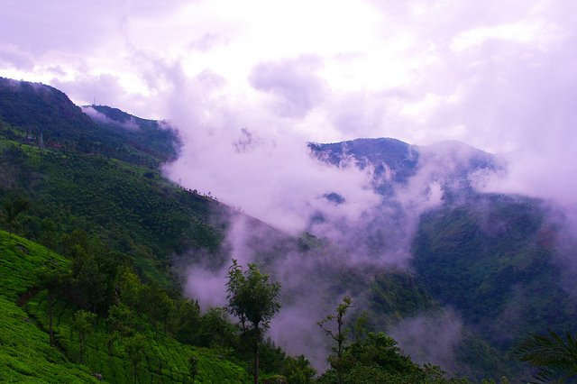 View from Dolphin's nose, Hill station Coonoor