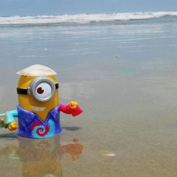The Minion Travel – Stuart's Adventure in Goa