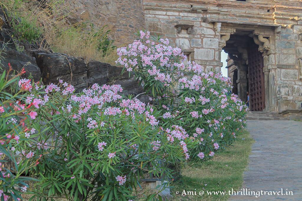 Paghara Pol - the gate where the army gathered in Kumbhalgarh fort near Udaipur