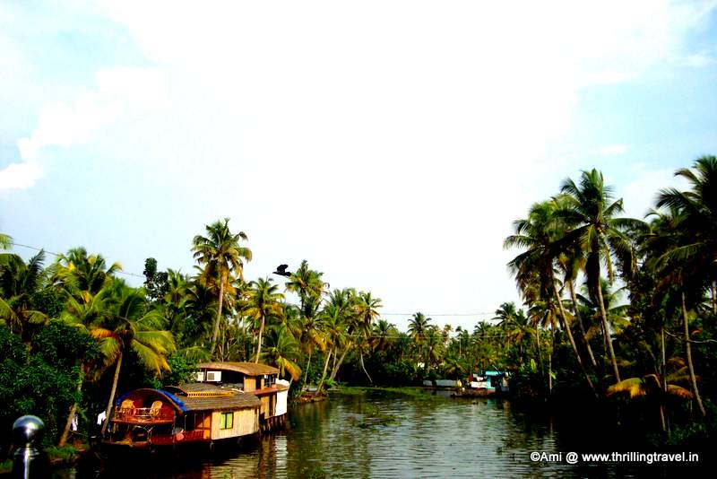 Alleypey - Backwaters of Kerala