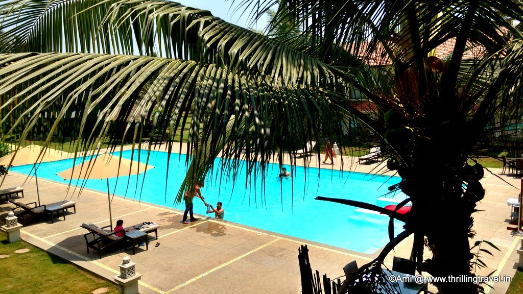 Pool at U Tropicana Resort, Alibaug