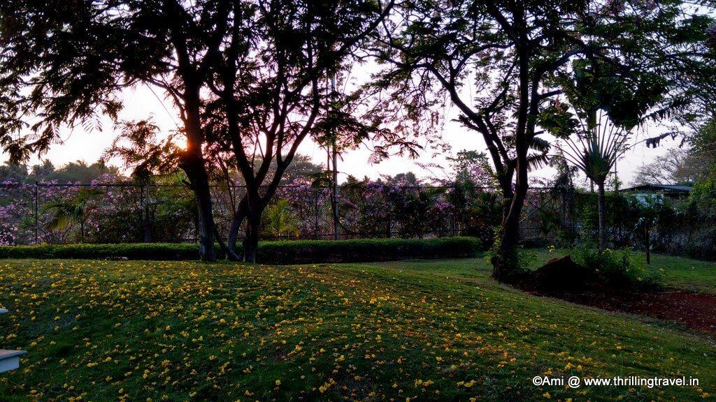 Sunset at U Tropicana Resort, Alibaug