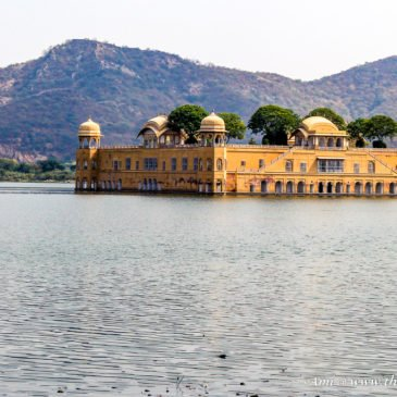 The intriguing Jal Mahal in Jaipur