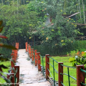 5 reasons to do a Spice Plantation tour in Goa