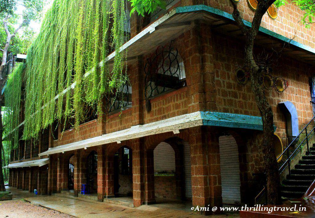 Greens at Shiksha Niketan, near the Houses of Goa Museum