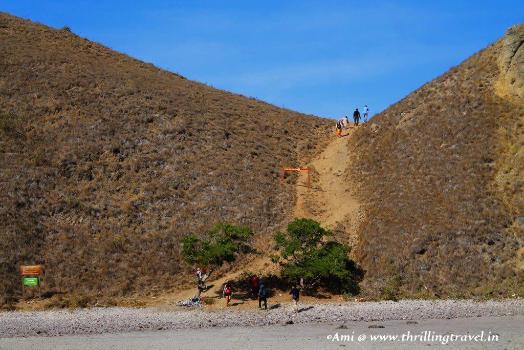 The level one of the trek up Padar Island