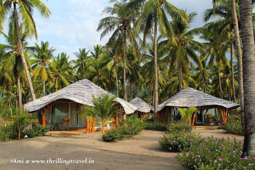 Our Hotel - Coconut Garden in Maumere, Indonesia