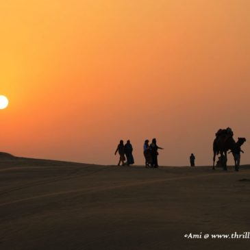 3 road trips to experience Rajasthan Tourism