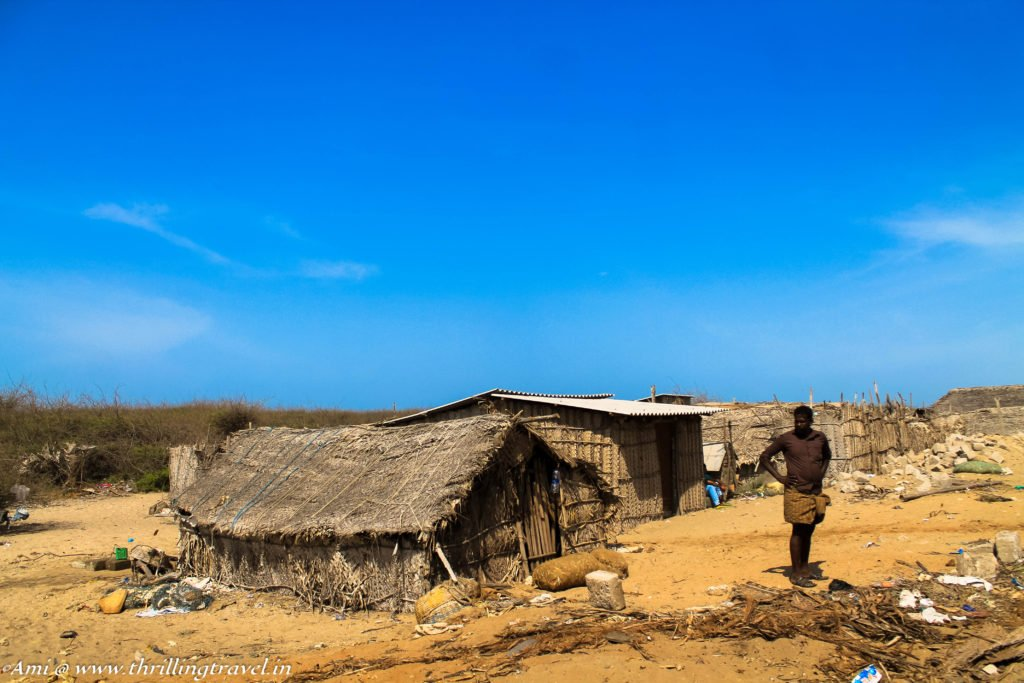 The fishermen's huts in Dhanushkodi