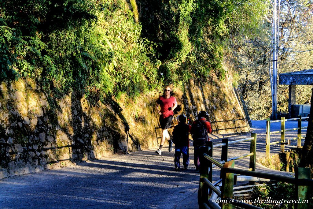 A path along Gol Chakkar, Landour