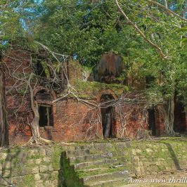 Officers' Homes in ruins on Ross Island, Andamans