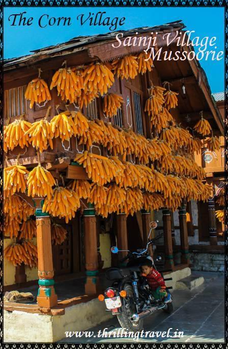 Corn Village