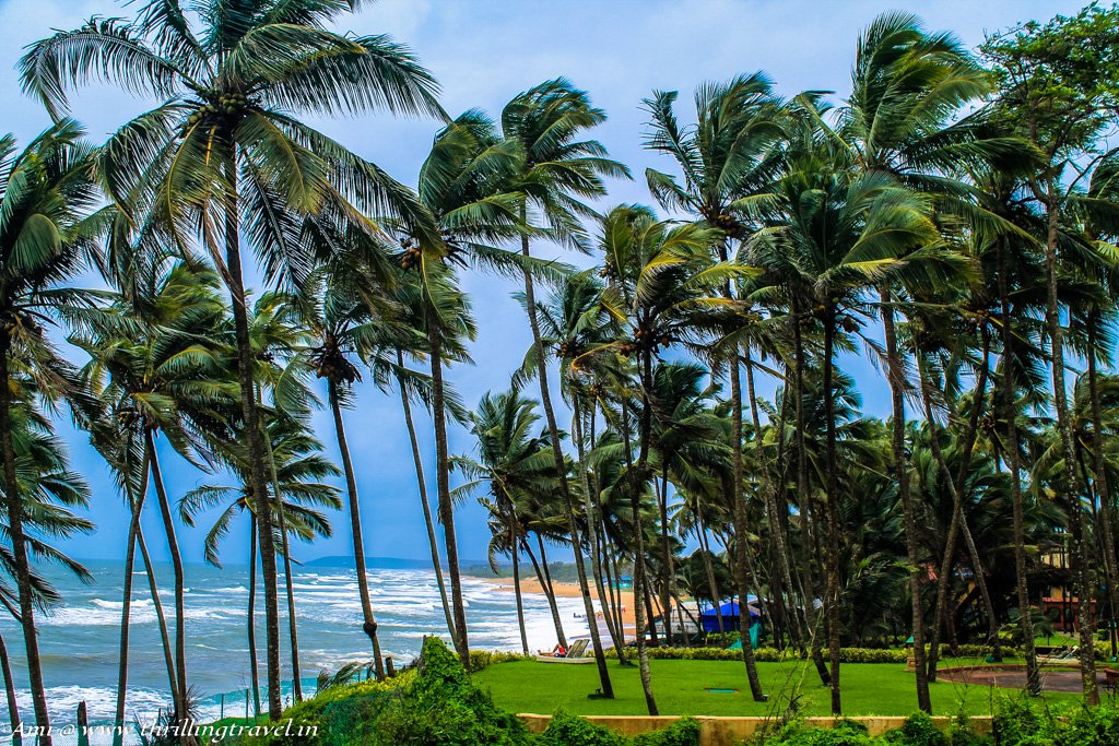 Hotels in Goa, along the beaches