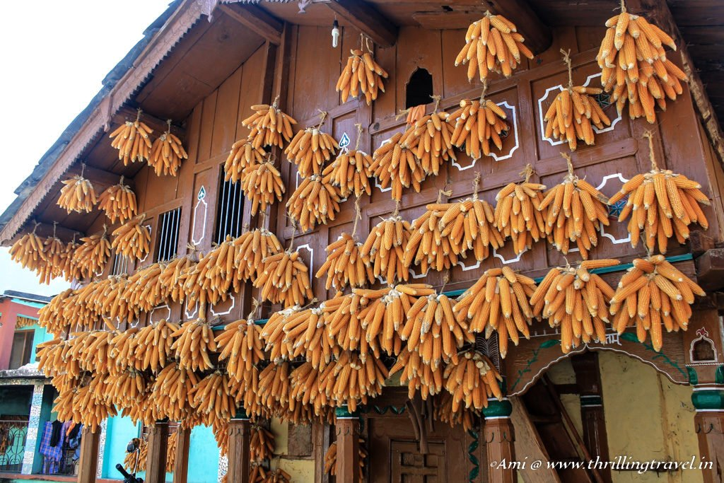 Corns adorning a house in the corn village of Sainji