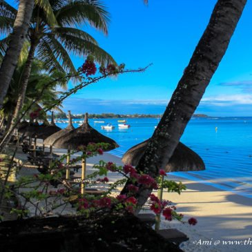 Why is it a pleasure to visit Mauritius?