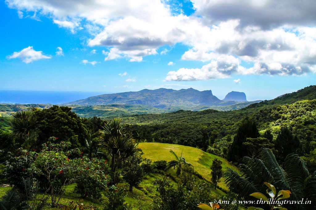View of the Black River Gorge from Varangue Sur Morne, Chamarel