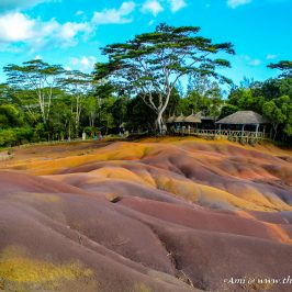 The view of the 7 colored earth from one of the observation points in Chamarel
