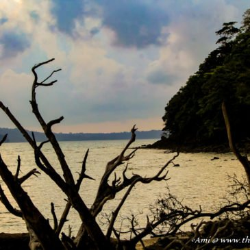 Chasing Sunsets at Chidiya Tapu in Andamans