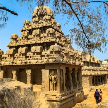 Unearthing the Pancha Rathas in Mahabalipuram
