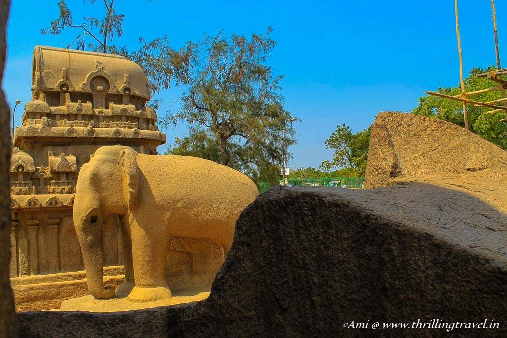 The carved elephant alongside Nakul-Sahadev Ratha
