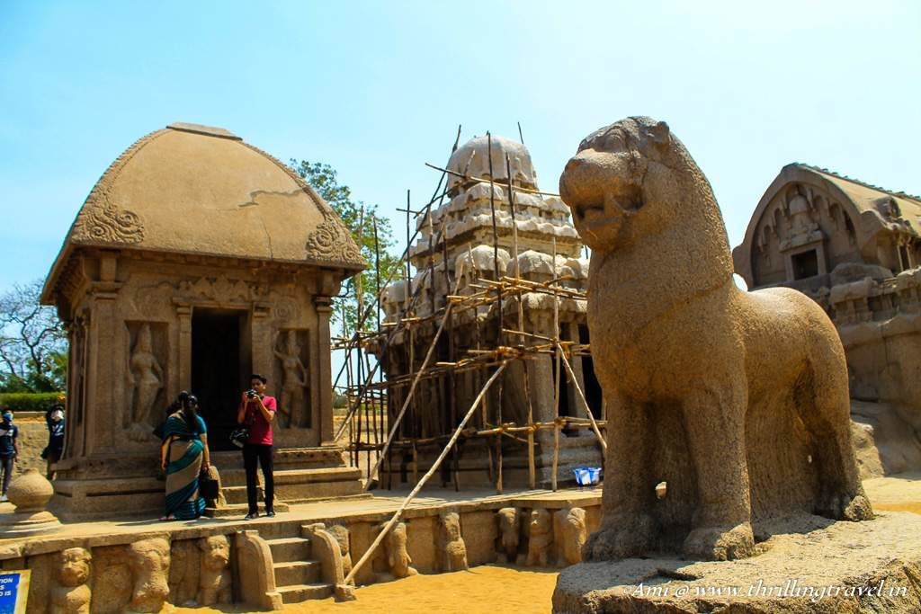 The mighty lion that stares at all the visitors to the Pancha Rathas