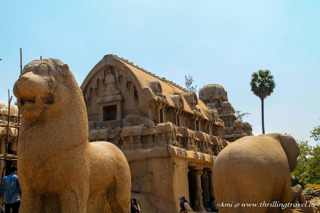Carved out of a single hillock - the Pancha Rathas