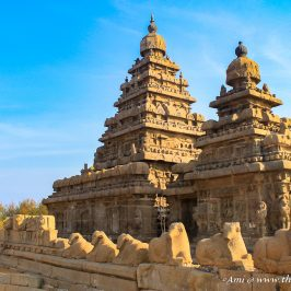 The Nandi walls of the Shore Temple Mahabalipuram