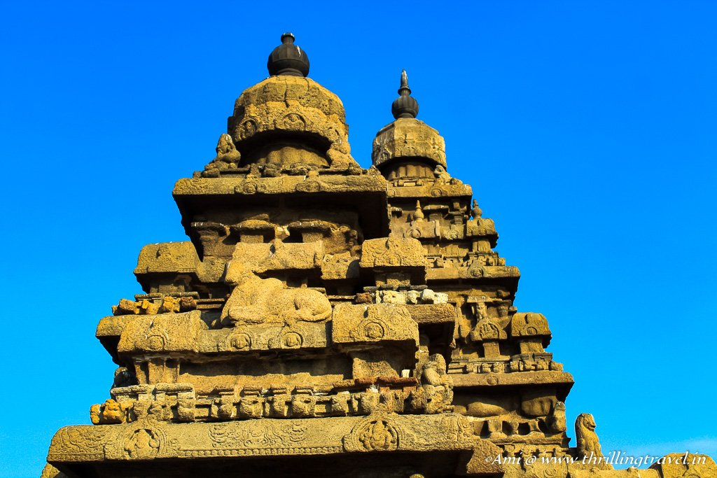 The pagoda shaped roof of the Shore Temple Mahabalipuram