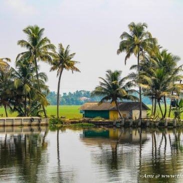 Life along the Backwaters of Kerala
