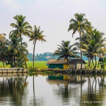 Life along the Backwaters of Kerala