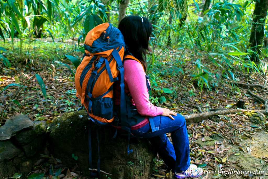 The straps on the Wildcraft Rucksack help carry a mat or a tripod.