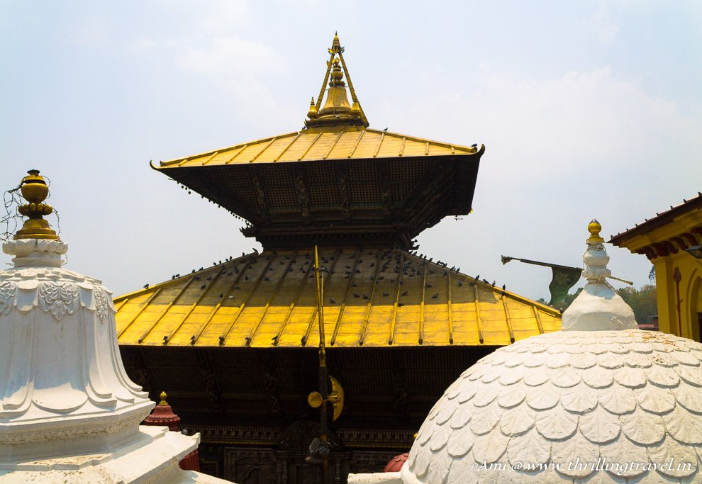Pagoda Styled roof of the Pashupatinath temple