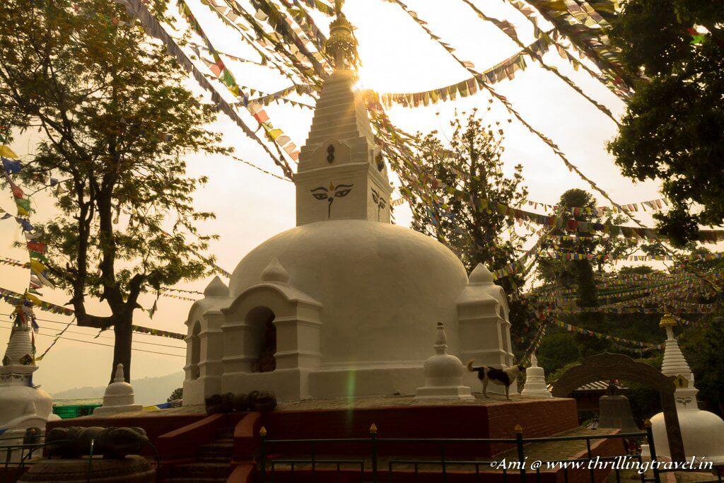 Mini Stupa within the Swayambhunath temple