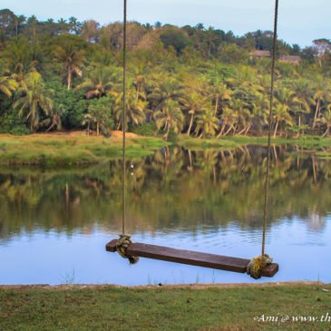 10 reasons why Versatile Kerala is a perfect destination for any kind of traveler