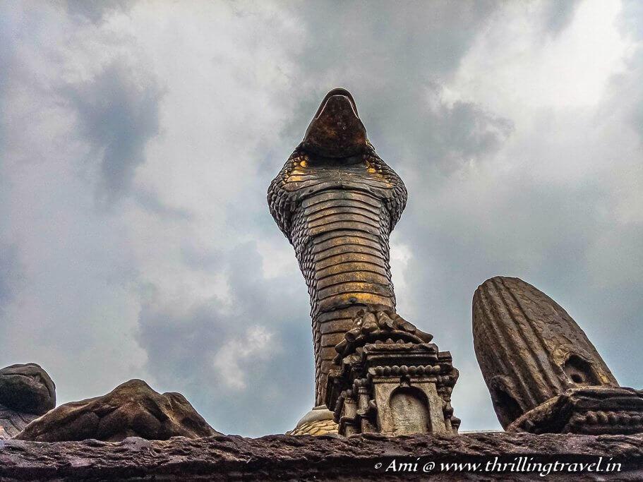 The Main Serpent in the Naga Pokhari at Bhaktapur
