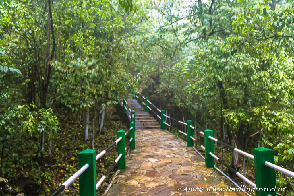 Path leading to the Mawsmai caves in Cherrapunji