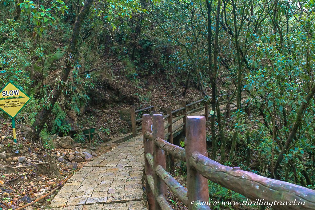 The scenic bridge that takes you to Arwah Lumshynna Caves in Cherrapunji