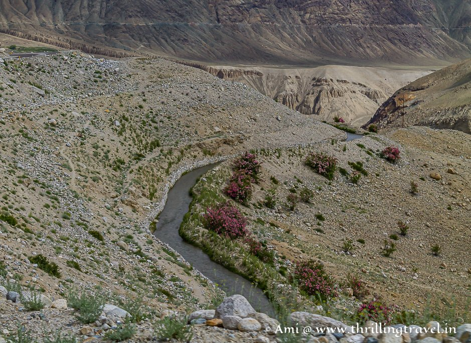 The colors of Nubra Valley Ladakh with Shyok river flowing through it