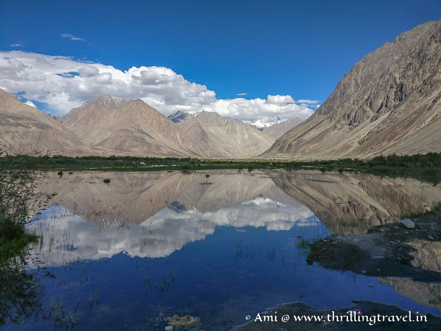Capturing the calming reflections - one of the things to do in Nubra Valley Ladakh