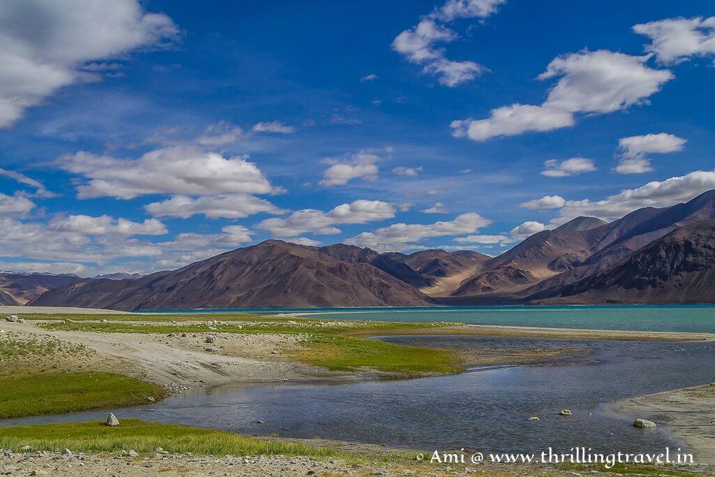 The plethora of colors around Pangong Lake Ladakh