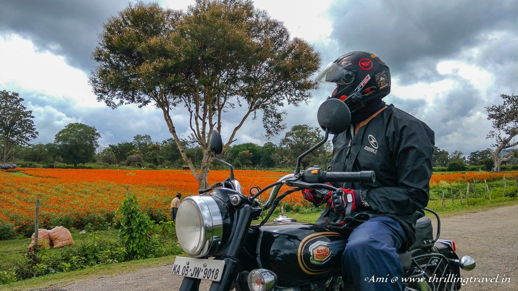The patches of marigold fields enroute to Wayanad in monsoons