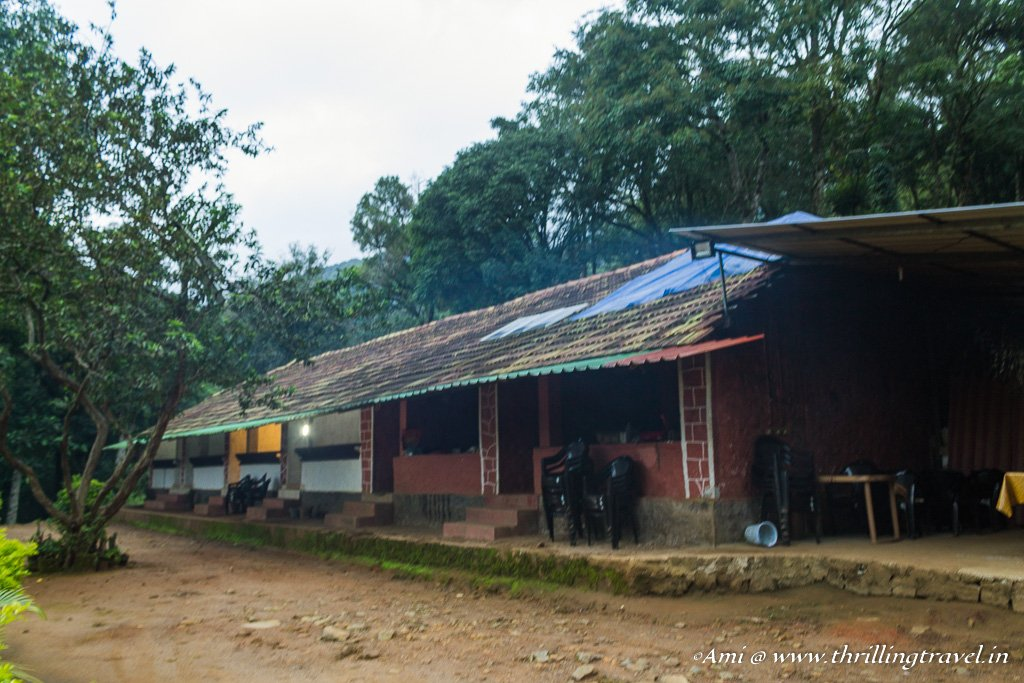 Dare Nature Camp in Wayanad