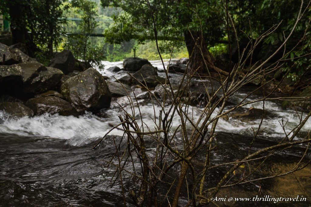 The streams at Thusharagiri Falls, Wayanad in Monsoons
