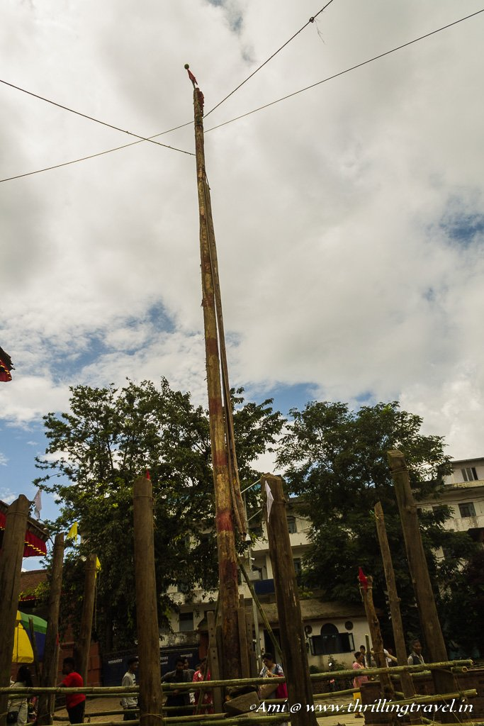 The Indra Pole erected on the first day of Indra Jatra