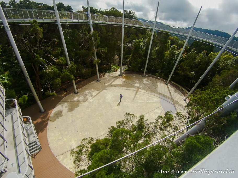Tree Top Walk at The Habitat Penang Hill